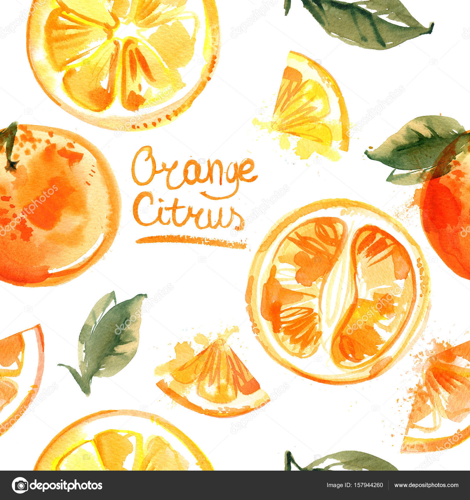 Pattern Oranges Painted Watercolors White Background Halves