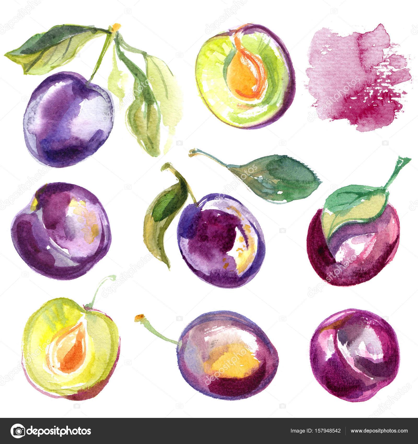 Muster Der Aquarelle Von Früchten Auf Einem Weißen Hintergrund
