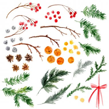 Christmas ornaments from the branches painted with watercolors on white background. Branches of trees. Holly sprigs with red berries.