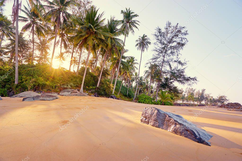 Sunny day on tropical beach