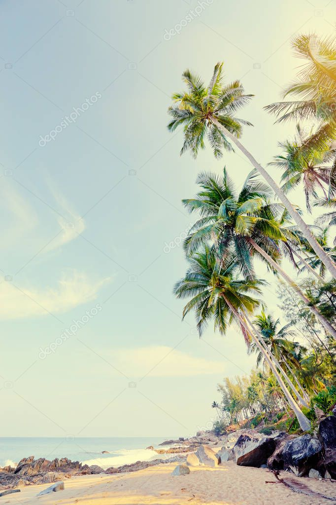 Sunny day on tropical beach