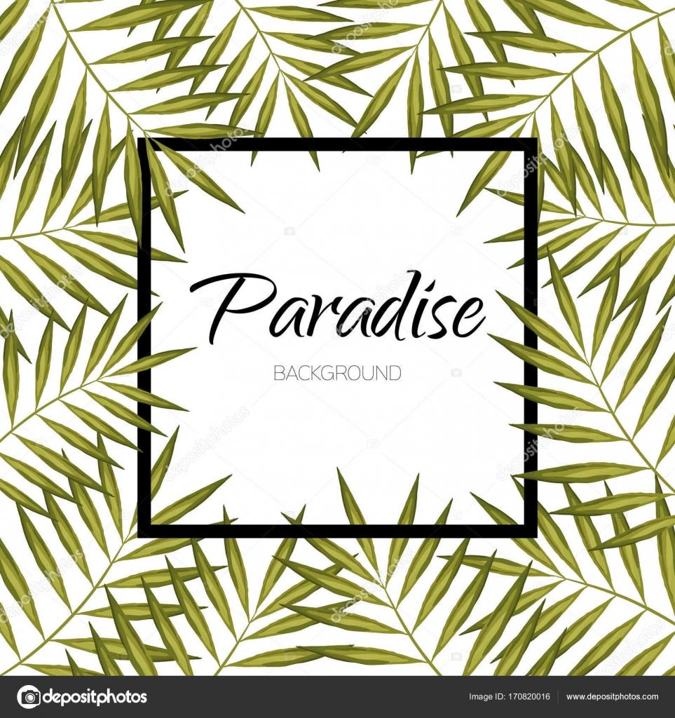 Paradies-Vektor-Blätter. Palm Tree Banner. Exotischen aloha Rahmen ...