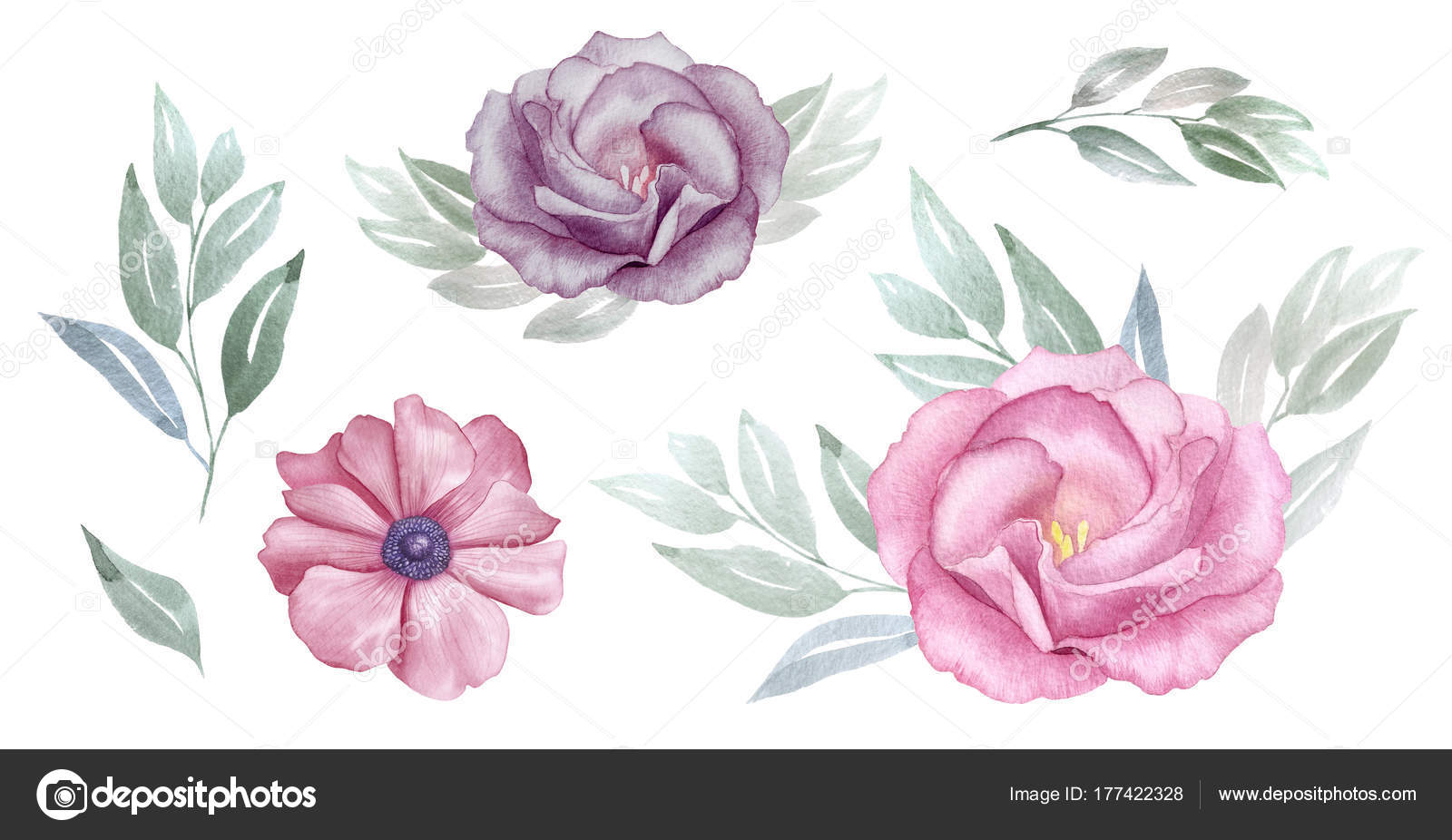 Vintage Pink And Purple Flowers Watercolour Set Rose And Anemone
