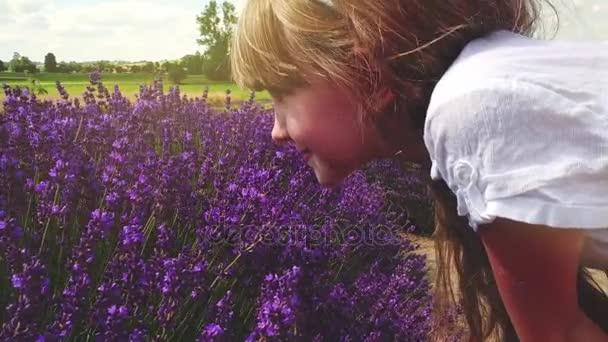 Blond dívka v bílých šatech vonící květy levandule pole