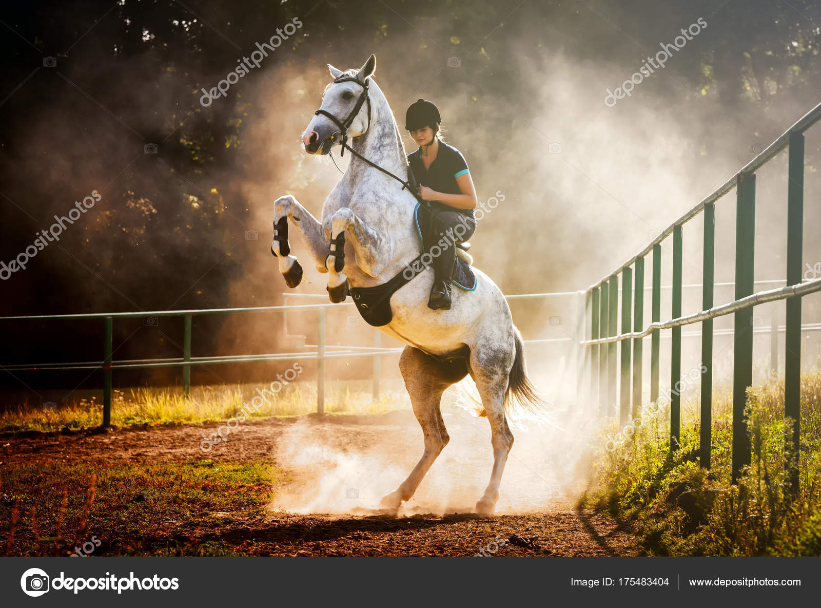 Woman Riding A Horse In Dust Beautiful Pose On Hind Legs Stock Photo C Leszekglasner 175483404