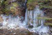 Ledovec v potoce White v Národním parku Slovenský ráj, Slovensko