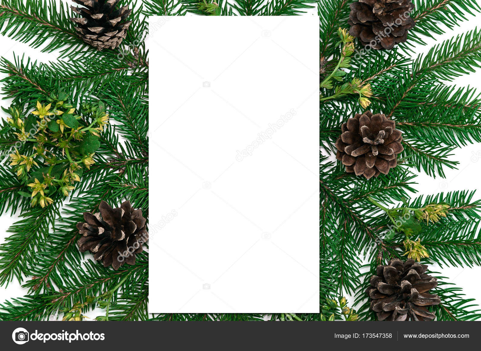 paper blank christmas tree branches golden decorations on white background flat lay top view copy space square photo by nsamorodskaia - Blank Christmas Tree