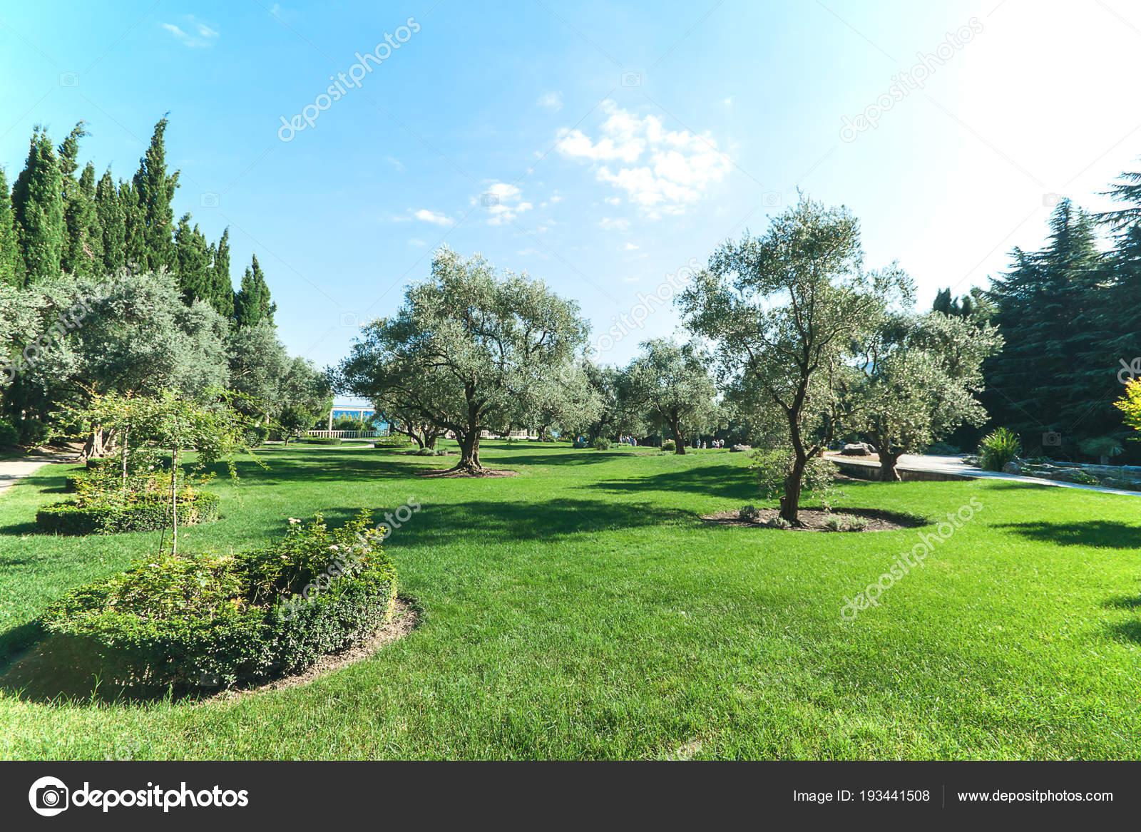 Beautiful Park With Path In Suumer Day Blue Sky Garden Design Landscape Background Stock Photo C N Samorodskaia 193441508