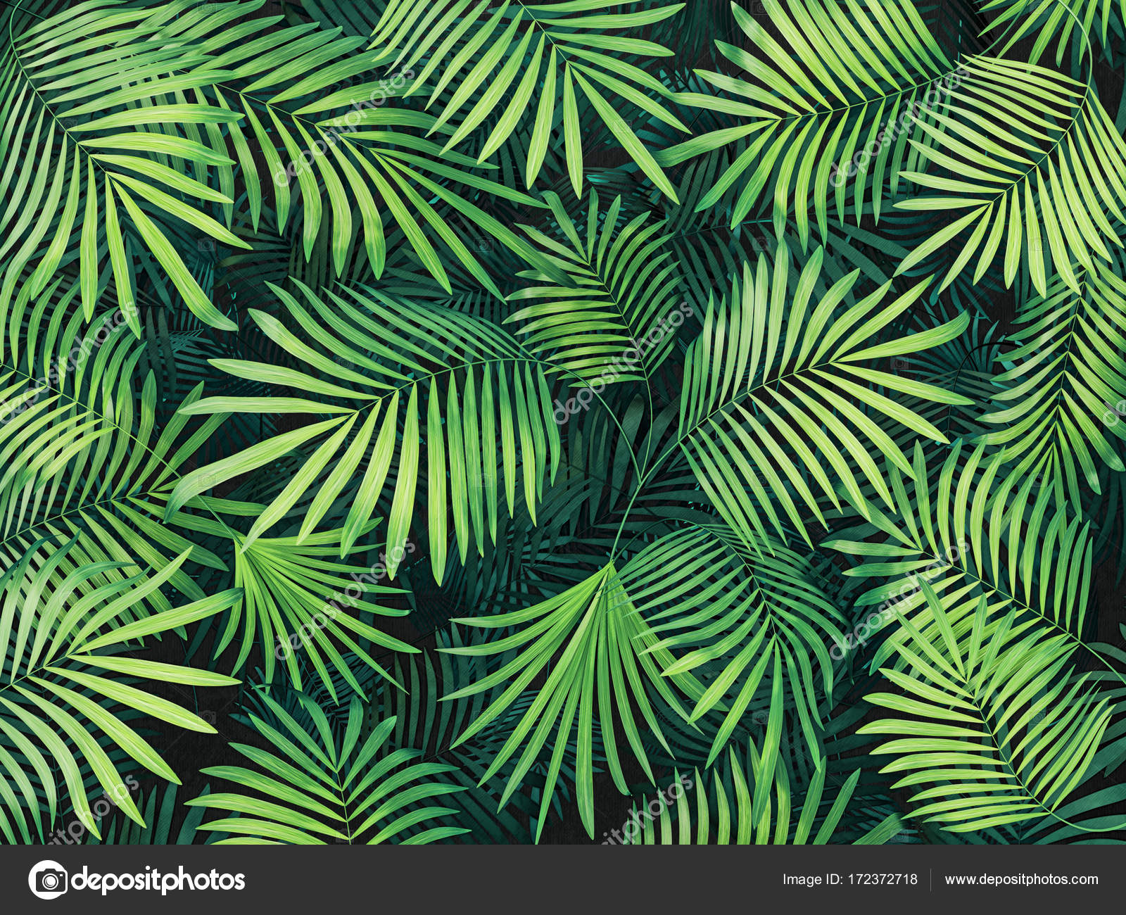 Áˆ Tropical Leaves Wallpaper Stock Photography Royalty Free Tropical Leaves Photos Download On Depositphotos The illustration is available for download in high resolution quality up to 4134x4134 and in eps file format. https depositphotos com 172372718 stock photo tropical leaves background html