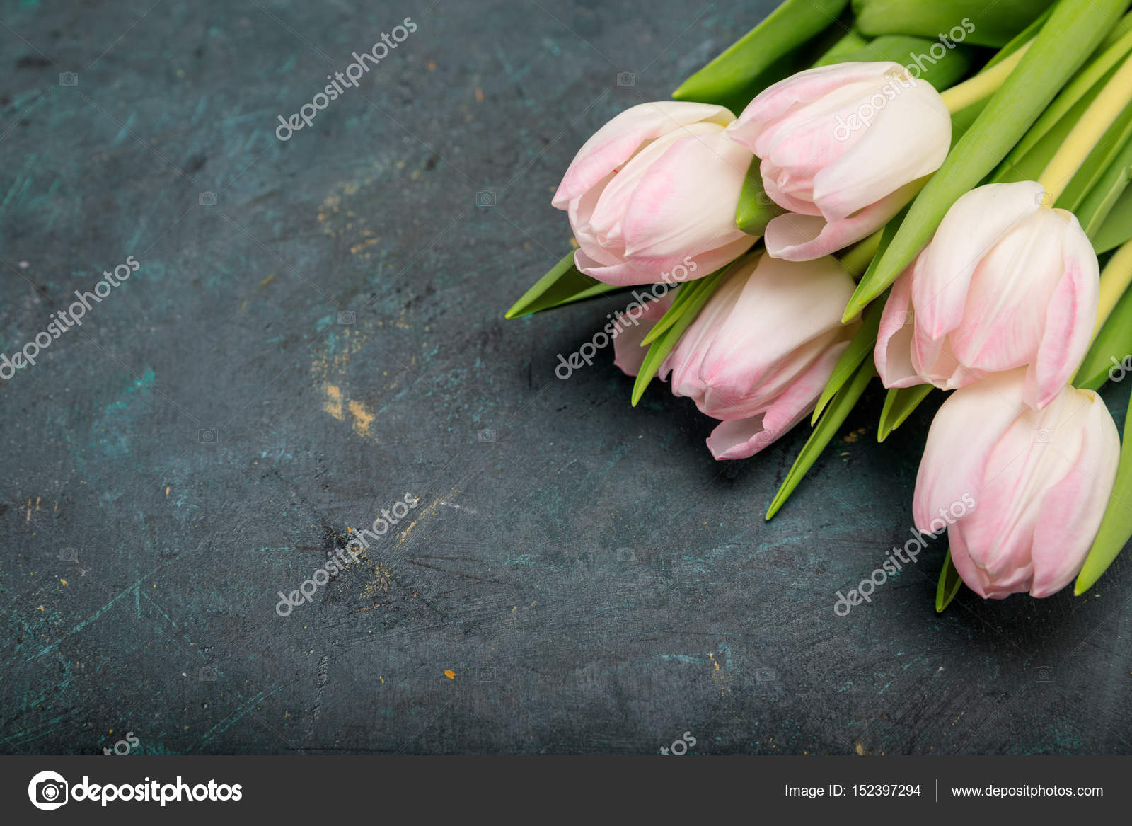 Artistic Flowers Pictures Artistic Flowers Stock Photos Images Depositphotos