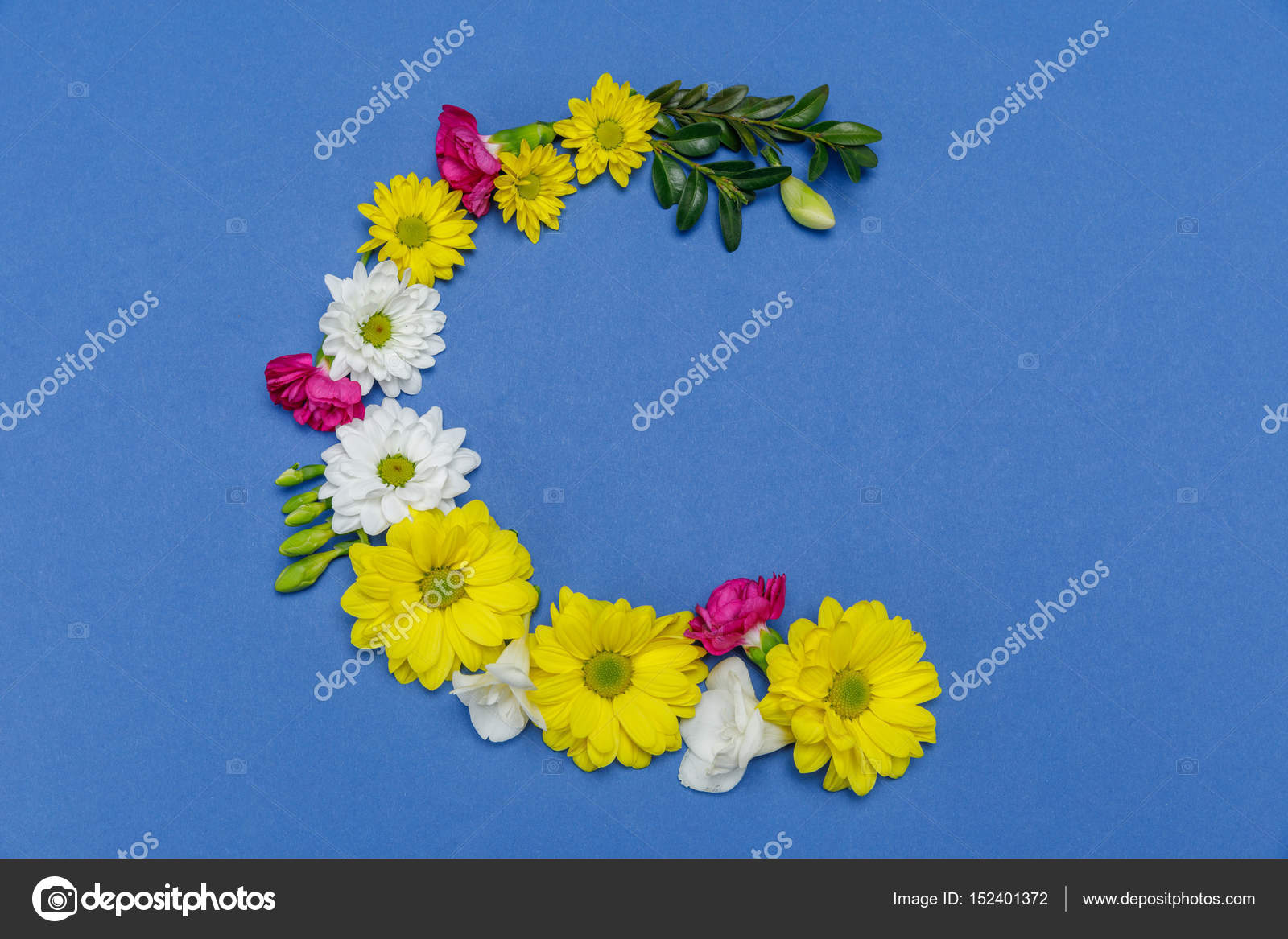 Beautiful blooming flowers — Stock Photo © VikaKhalabuzar #152401372