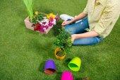 vágott nézet Kertész növények és virágtartók ül a fűben