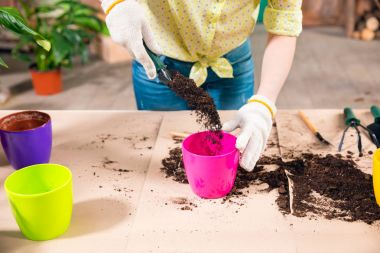 cropped view of woman with shovel, soil, flowerpots and plant on table