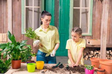 mother and daughter with plants and flowerpots standing at table on porch