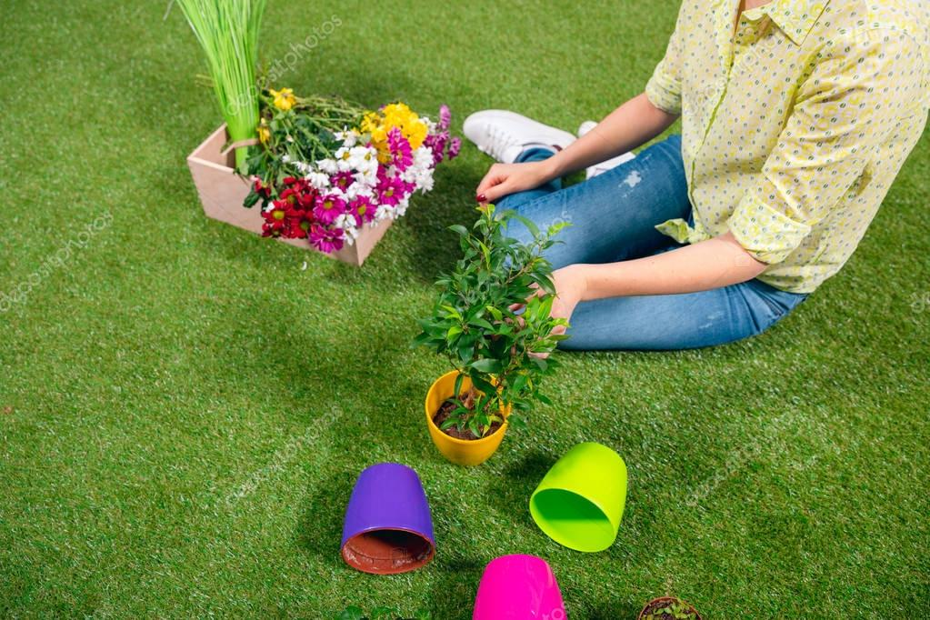 cropped view of gardener with plants and flowerpots sitting on grass
