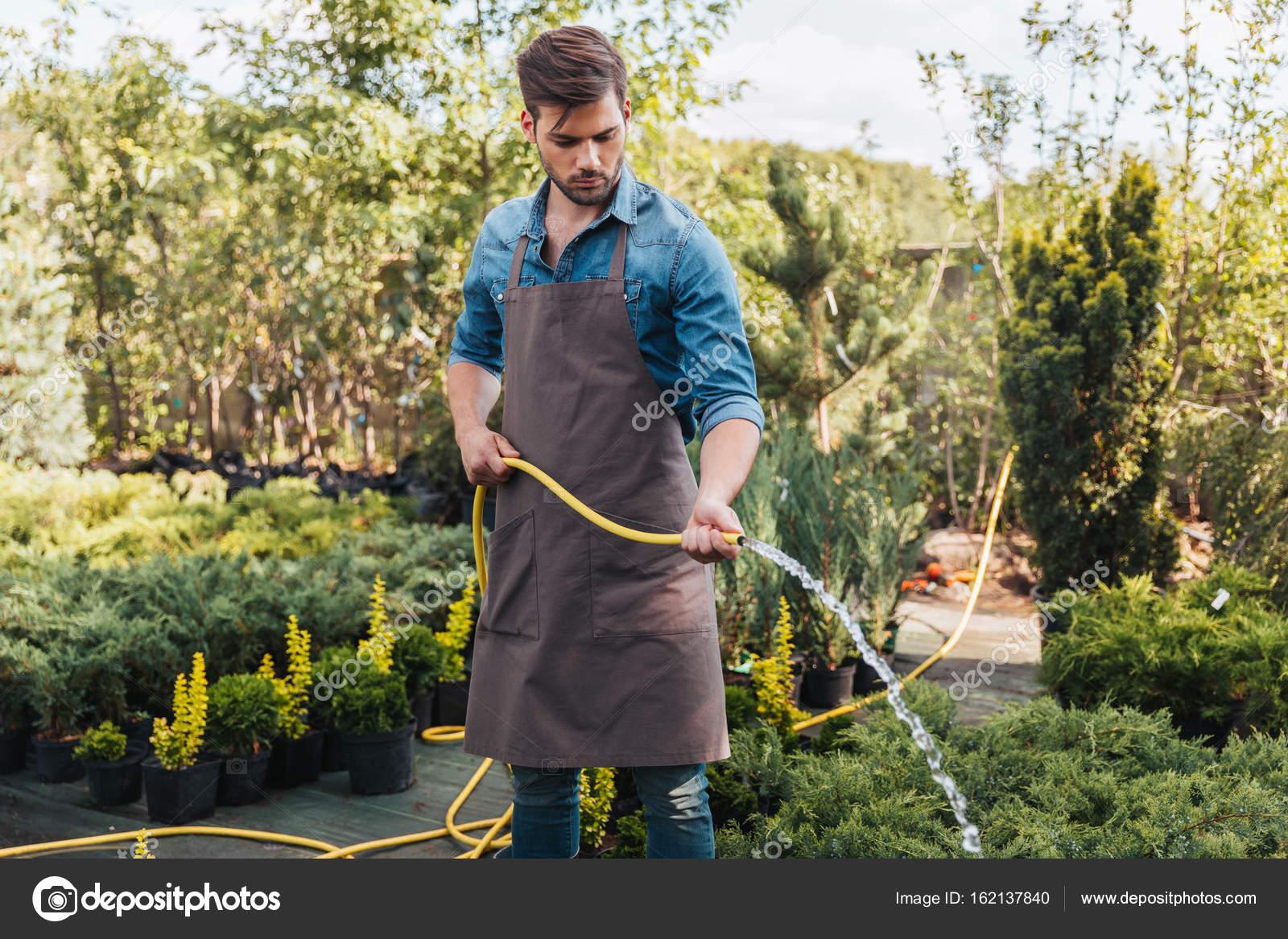 Jardinero en delantal regar las plantas fotos de stock for Se necesita jardinero