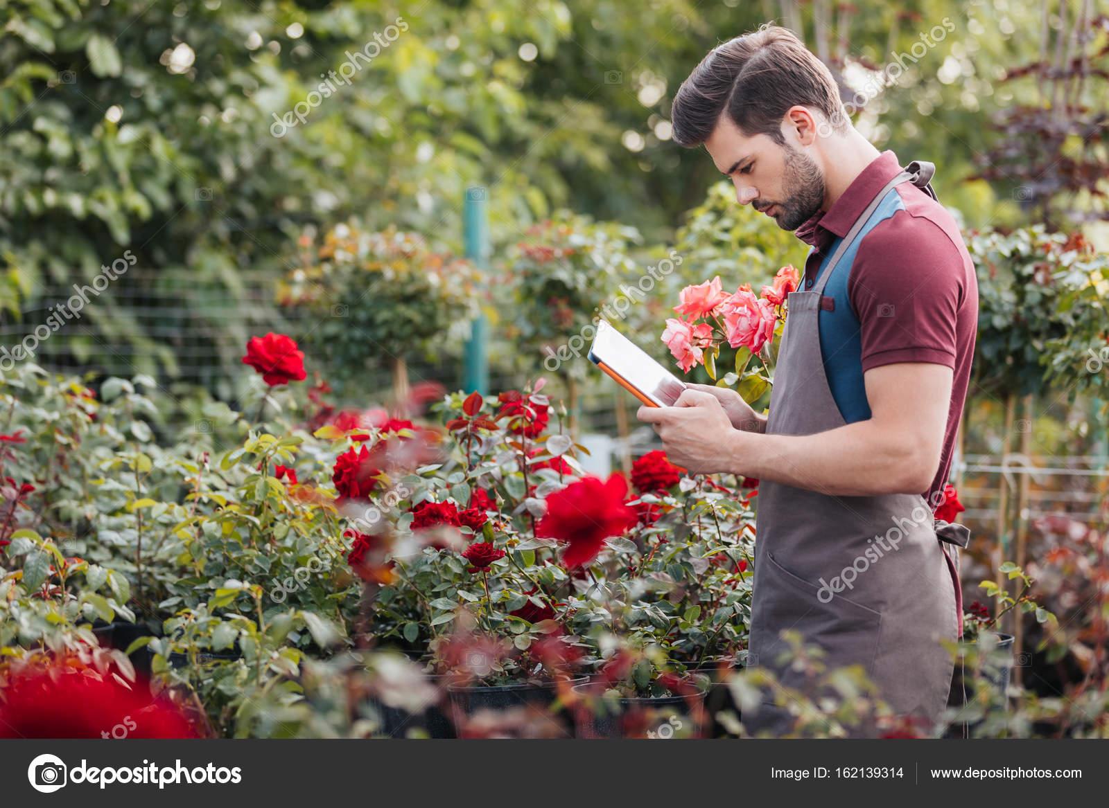 Jardinero con tableta durante el trabajo en el jard n - Trabajo de jardinero en madrid ...