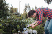 zahradník, kontrola květiny v zahradě