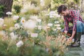 Zahradník pracující na zahradě