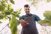 zahradník s prořezávání nůžky bourárny