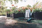 konev, lopatka a hrábě v zahradě