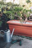 Gießkanne, Handkelle und Harke im Garten