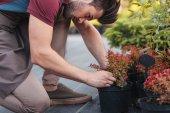 Kertész berendezések ellenőrzése