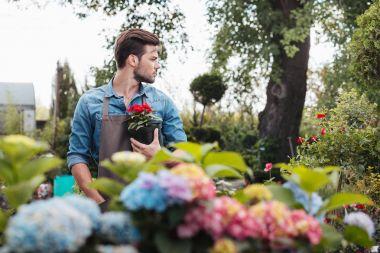 Portrait of pensive gardener holding flower in flowerpot while standing in garden and looking away stock vector