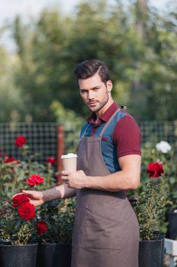 Portrait of handsome gardener in apron holding disposable cup of coffee in garden stock vector
