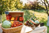 Fotografie čerstvá zelenina na Farmářský trh