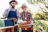 zöldségeket piacon értékesítő gazdálkodók