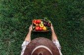 Fotografia cestino di azienda contadino con verdure