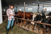 psaní poznámek v Kravíně farmář