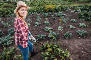 farmer hoeing beets