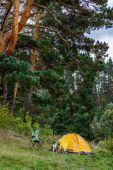 Fotografia Campeggio con tenda in foresta