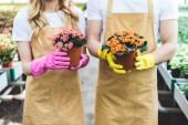 Fotografie Pár zahradníci v rukavicích drží hrnce s květinami