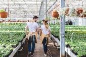 Muž a žena zahradníci chůze mezi květy ve skleníku