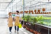 Fotografie Žena s hráběmi a muž s konev procházky mezi rostliny ve skleníku