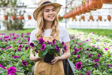 Young female gardener holding pot with flowers in glasshouse
