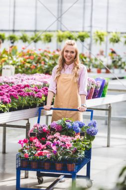 Blonde woman pushing cart with flowers in greenhouse stock vector