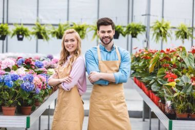 Blonde woman and handsome man in aprons among flowers in glasshouse