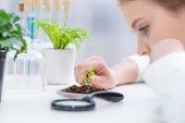 Dívka s zelených rostlin v laboratoři