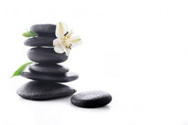 Zen stones with flower
