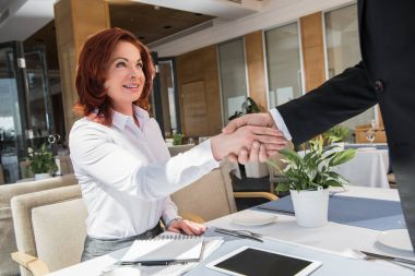 business partners shaking hands