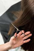Fotografie Haare schneiden