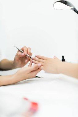 professional manicure procedure