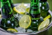 Fotografie Kbelík plný ledu a pivní láhve