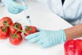 Fotografia Scienziato con la siringa e pomodori
