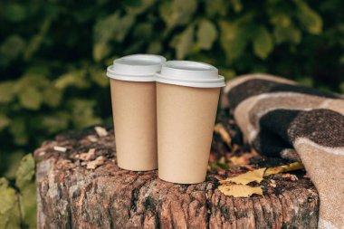 paper cups in stump