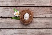 velikonoční vejce v hnízdě